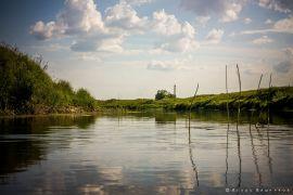 Лето и дикий отдых Советчан